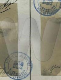 Elizabeth Sue Fong - 1909